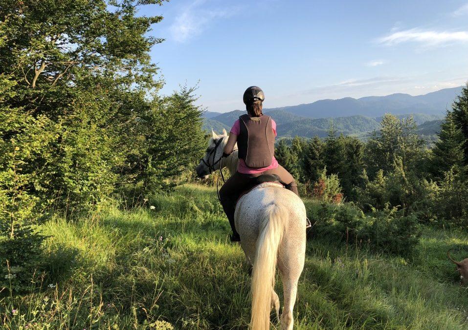 Monter à cheval en toute sécurité avec un gilet de protection dorsale!